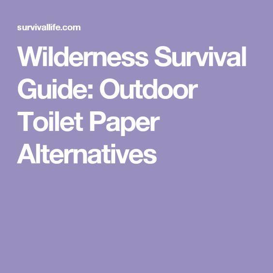 Best 25 outdoor toilet ideas on pinterest home buckets - Airstone exterior adhesive alternative ...