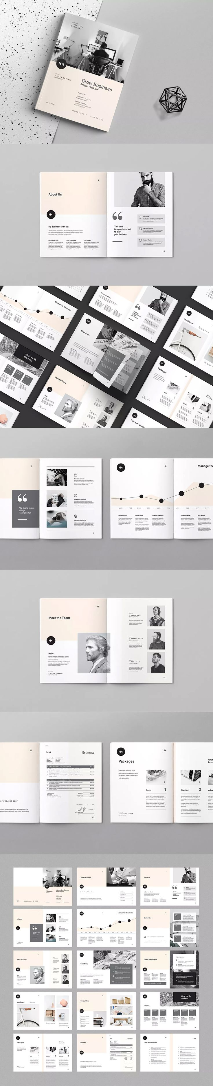 Project Proposal Template InDesign INDD A4 and