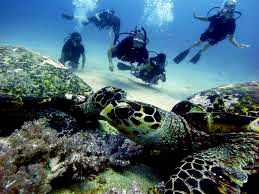 amazing honeymoon on gili trawangan island  lombok