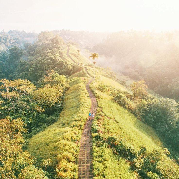 Campuhan Ridge Walk, Bali   http://blog.pergi.com/5-ide-kencan-dan-liburan-romantis-di-bali-yang-anti-mainstream/
