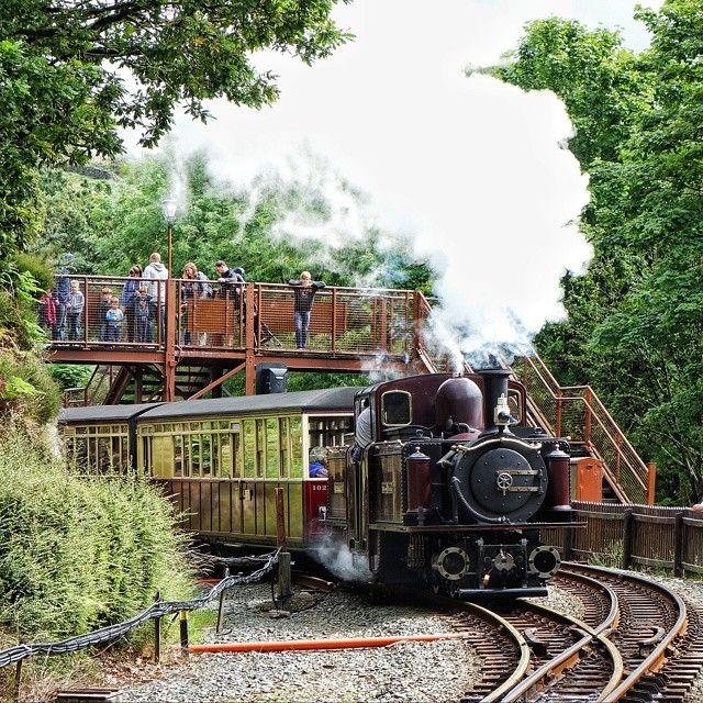 Merddin Emrys departing Tan y Bwlch station.  #uktrains #eisenbahnfotografie #train_chasers #daily_crossing #eisenbahnbilder #ukrailscene #railways_of_our_world #rsa_theyards #trainphotographics #train_explorer #train_nerds #kings_transports #tv_transport #rail_barons #pocket_rail #trains_worldwide #heyfred_lookatthis #rsa_trains #jj_transportation #tv_transport #steamlocomotive #trb_express #ig_trainspotting #pc_transport #eisennahnfinder #railwaysofeurope  #eisenbahnfieber…