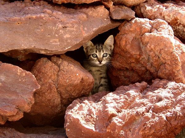 Santorini island Corfu2travel.com