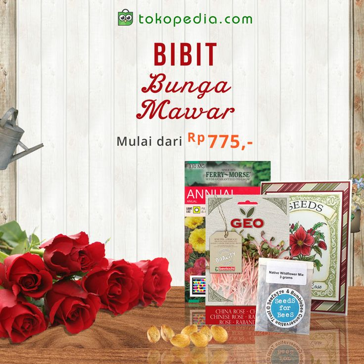 Buat suasana rumah menjadi lebih asri dan cantik dengan menanam Bunga Mawar di pekarangan rumahmu.  Beli dan tanam Bibit Bunga Mawar di http://www.tokopedia.com/hot/bibit-bunga-mawar mulai dari Rp 775,- / bibit (harga bervariasi).