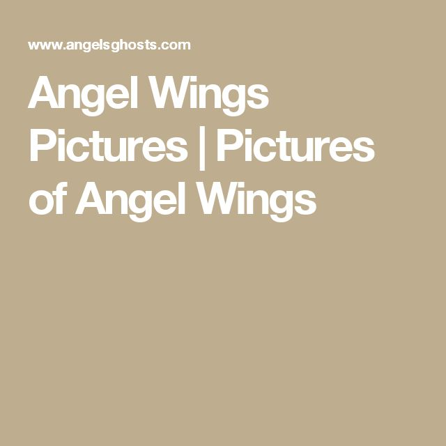 Angel Wings Pictures | Pictures of Angel Wings
