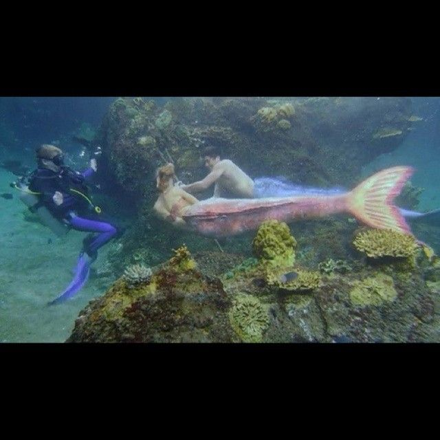 98 best Mako Mermaids - ZAYLA images on Pinterest | Mako ...