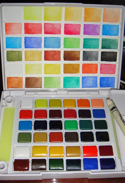 Sakura KOI watercolor field palette and Winsor & Newton Pocket Plus