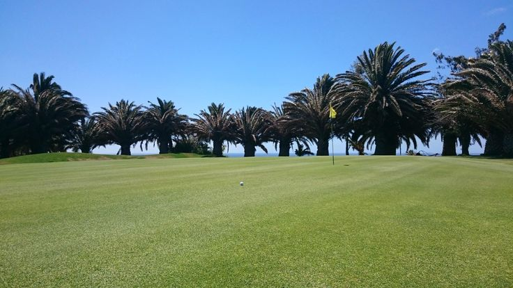 Costa Teguise Golf Club, Costa Teguise: See 86 reviews, articles, and 13 photos of Costa Teguise Golf Club, ranked No.9 on TripAdvisor among 24 attractions in Costa Teguise.