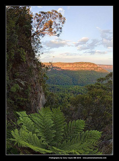 雄大な自然。ブルーマウンテンズの美しい写真を集めました。