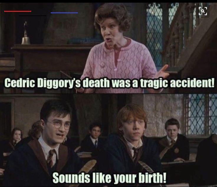 Lustige Harry Potter Bilder Harrypottermemes Der Titel Sagt Alles Lachflash Memes Divertidos De Harry Potter Memes De Harry Potter Fotos Divertidas