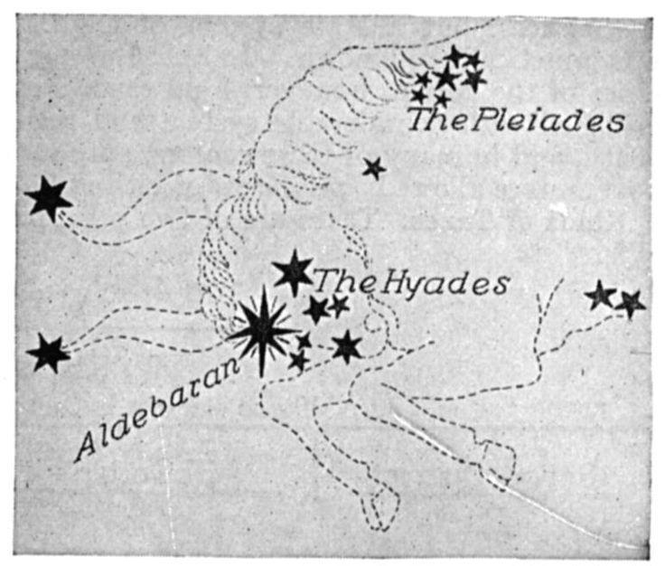 Das Sternbild Stier wird durch einige griechische Mythen erklärt. Einige sagen, dass es darst…