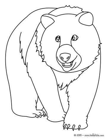 Big Bear Coloring Page More Forest Animals Pages On Hellokids