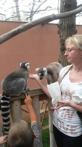 Nyíregyházi Állatkert2