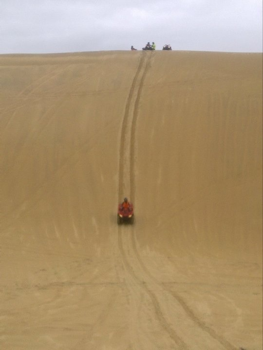 Sand Dune Adventures take you up & down 40-100 Foot sand dunes!!