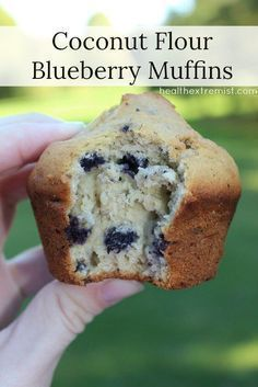 Coconut Flour Blueberry Muffins (gluten free, dairy free, low carb). I would sub…