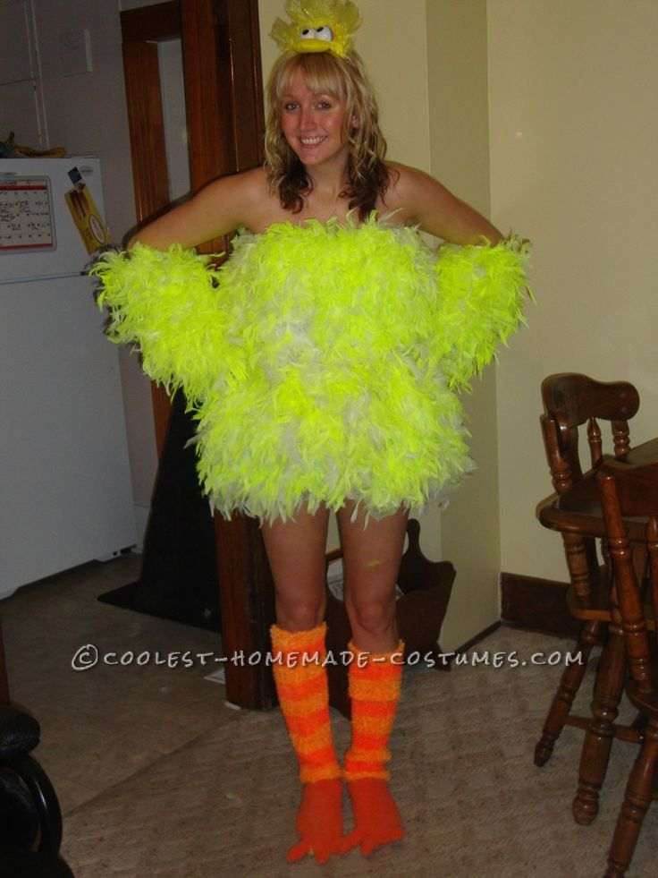 Think, Adult big bird costume