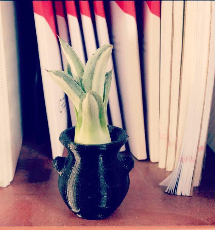 Mini succulent planter $5.00
