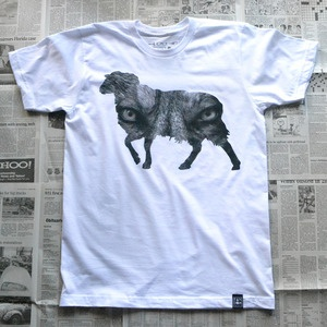 Wolf In Sheep's Clothing -- RANDOM OBJECTSMi Style, Belong, Wolf, Sheep Clothing, Image, Difficulties, Wolves, Products, Random Object
