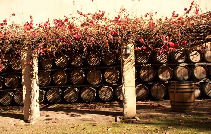 Winelands, South Africa, Stellenbosch