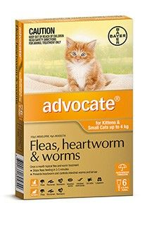 Advocate Cat 0-4Kg Small - Advocate for Cats is a monthly spot-on type medication for the prevention of heartworm, and the treatment of fleas, hookworm, roundworm, and ear mites in cats.