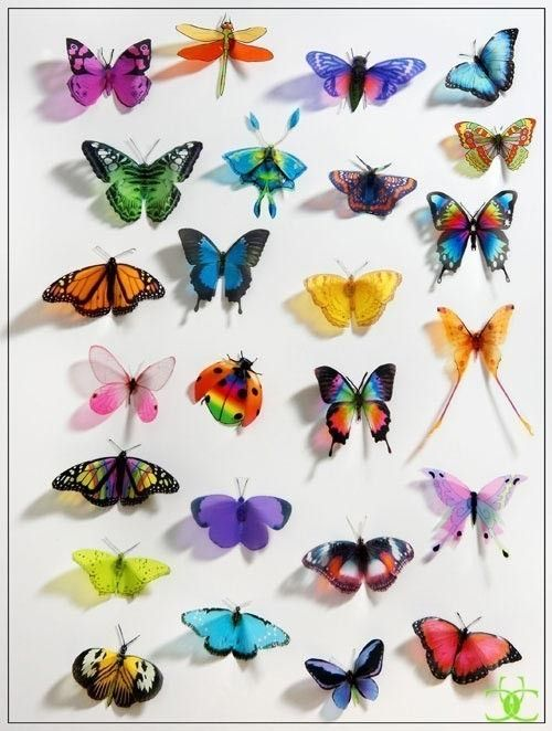 50 pack of 3D Butterflies Dragonflies and by clearcutcrafts2007