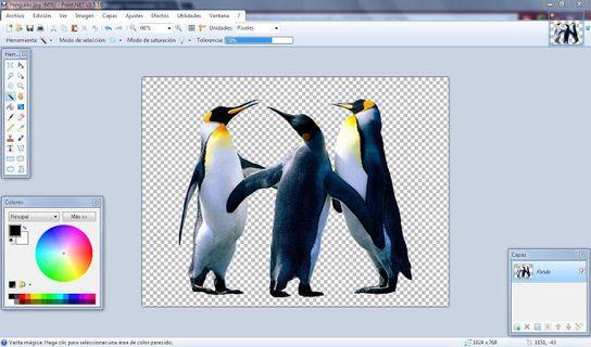artiuloseducativos.es: Como quitarle el fondo a una imagen con Paint.NET