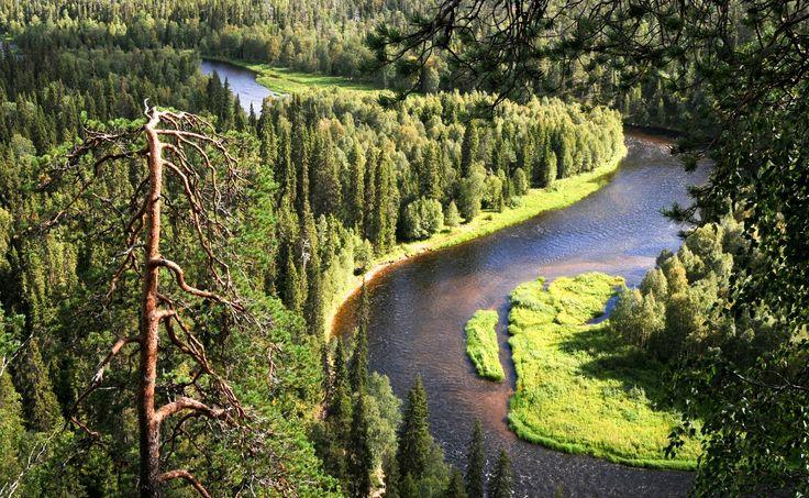 Oulanka National Park Finland Kuusamo
