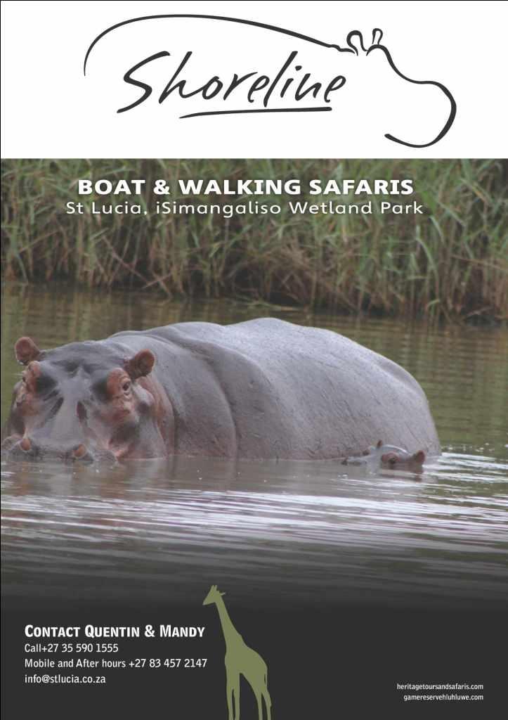 Join Shoreline Hippo and Croc Boat safaris - St Lucia iSimangaliso Wetland Park 035 5901555