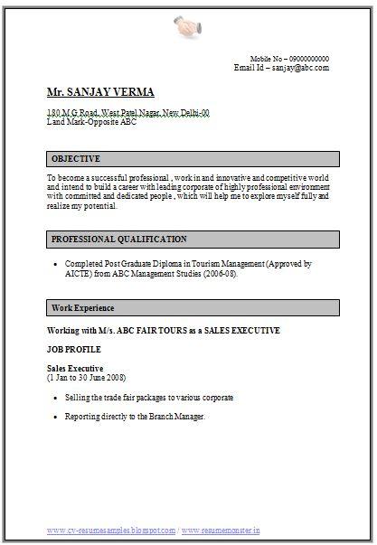 resume example tourism