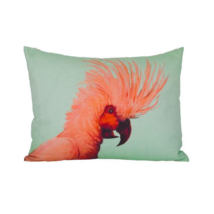 Rio cockatiel cushion