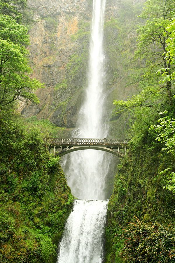 This fine art photograph of Multnomah Falls will add a touch of enchanting and beautiful Pacific Northwest and Oregon to your home. This gorgeous print is professionally printed on premium quality Fuj