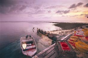 Abrolhos Island, Geraldton