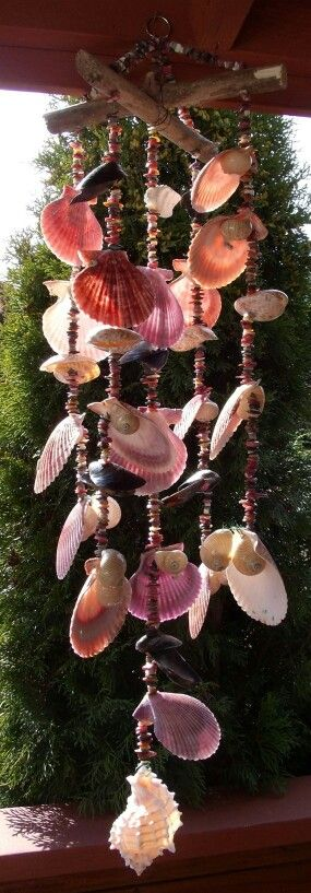 Sea Shell Wind Chime 10 Linear Nauticas & Nobilis Pectins