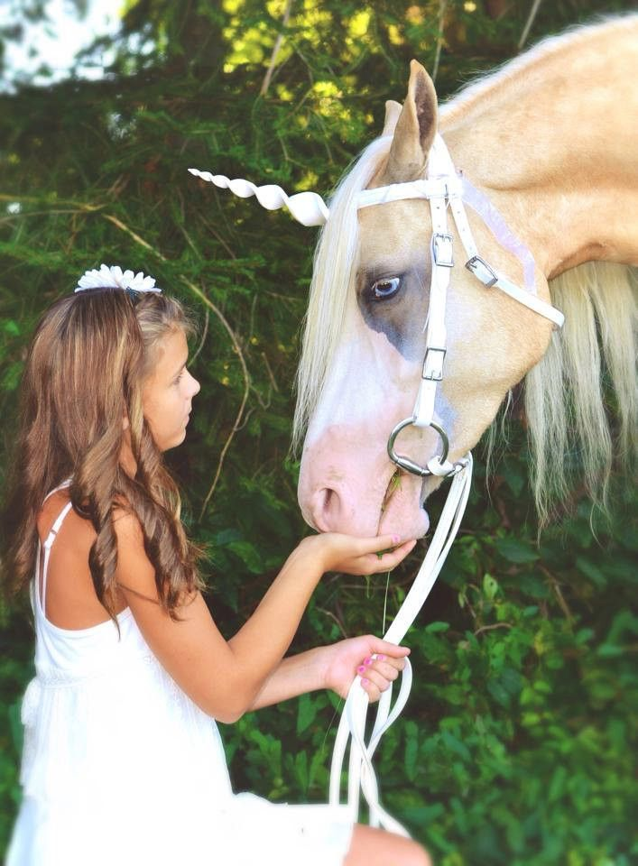 Would you like to transform your horse into a beautiful unicorn? With a Unicorn Corner horn, you can have your own unicorn in seconds! Unicorns make for wonderful photo shoots and magical birthday par