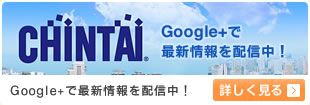 CHINTAIのウェブ