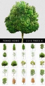 Tenkei Kobo Trees Textures CS15   LordofDesign.com - Download free graphic design, vector, brushes, psd, photoshop