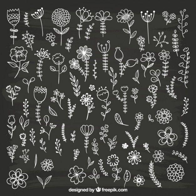 free vector hand drawn flowers on blackboard 2095 free vector
