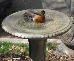 Image result for bahçe için kuş banyosu
