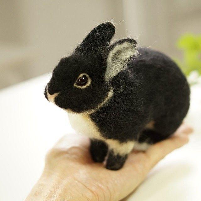 てのひらウサギ 黒の画像1枚目                                                                                                                                                                                 More                                                                                                                                                                                 もっと見る