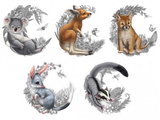 Bush Babies - illustrations for coins