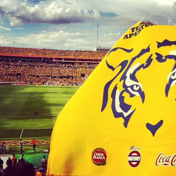 "@Picadillo Ilustrador's photo: ""#MiFotoEnElUni @Solo Tigres"""