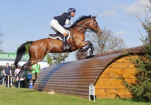 William Fox-Pitt and PARKLANE HAWK - Cross Country - Mitsubishi Motors Badminton Horse Trials 2013.