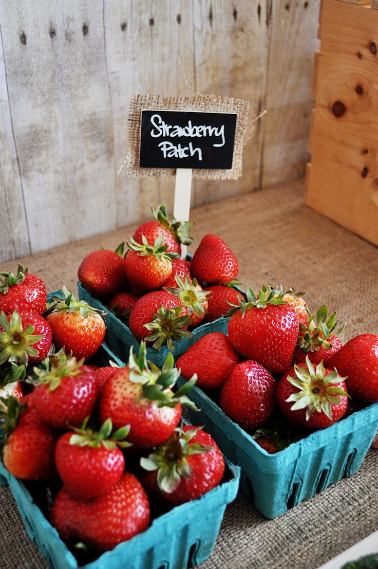 This is a picture of a strawberry patch. In this story, Lennie and George have a dream of owning their own farm. Also,in the farm they are going to have a strawberry patch.