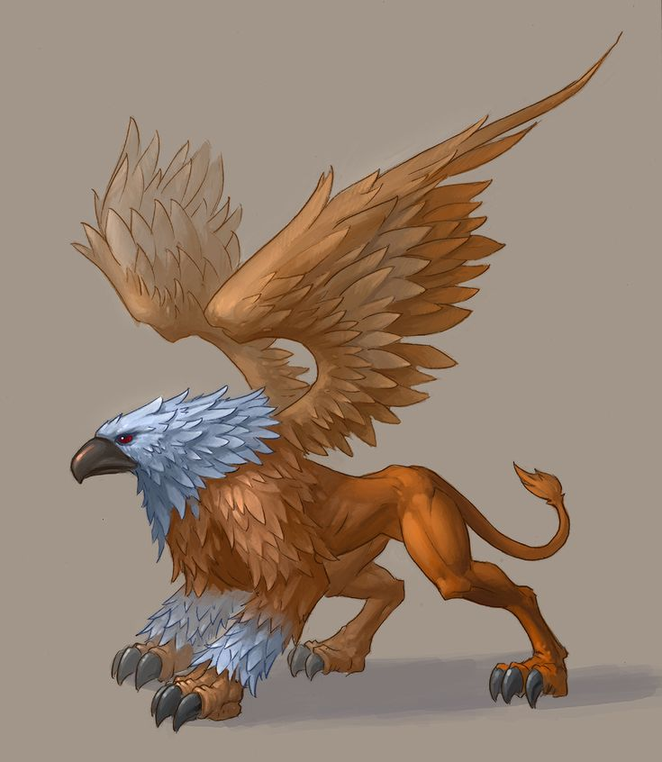 89 best ideas about gripho on pinterest a lion mythology and griffin tattoo - A picture of a griffin the creature ...