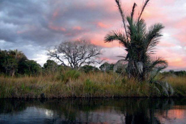 Northern Province, Zambia