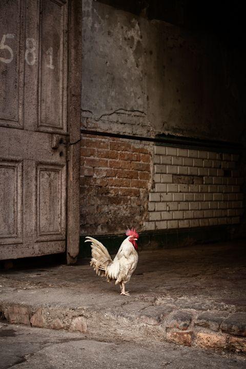 Havana, Cuba | Eric Kiel