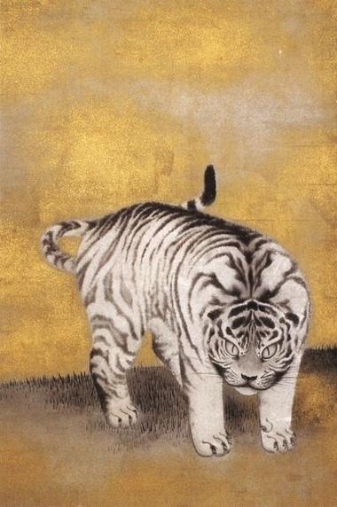 円山応挙 游虎図2. Maruyama Ōkyo. Tiger. Detail from screen.