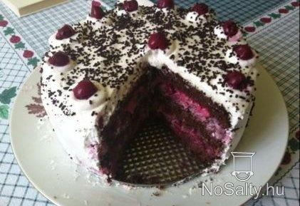 Kirsch torta adromelke konyhájából: http://www.nosalty.hu/recept/kirsch-torta-adromelke-konyhajabol