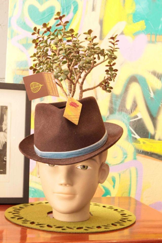 Matera sombrero