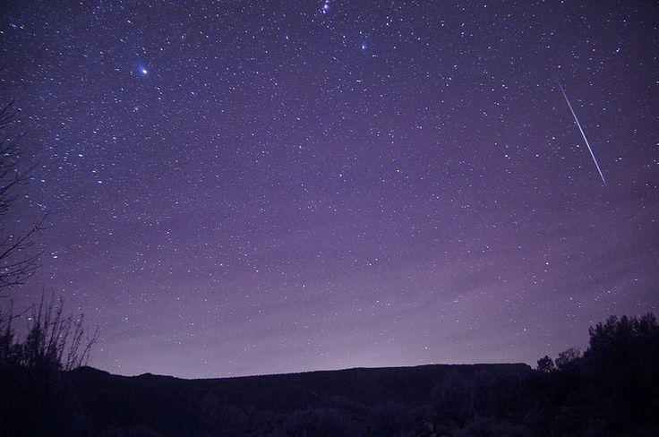 The Meteors Night Of The Werewolf