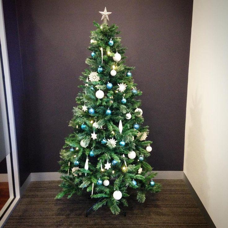 Christmas tree is up! Hope everyone is enjoying the last month of 2015. #christmas #dentist #bendigo #claritydentalbendigo